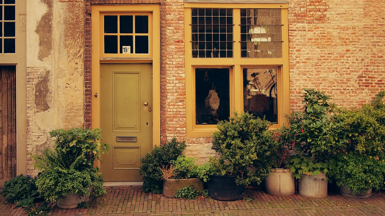 Picture of large potted plants in front of the door